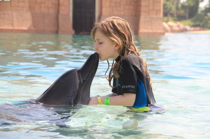 My daughter swim with dolphins